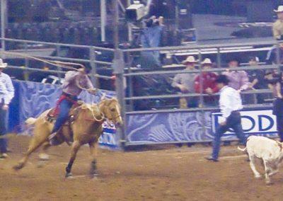 Houston-Rodeo-2010-10