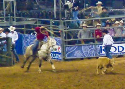 Houston-Rodeo-2010-11