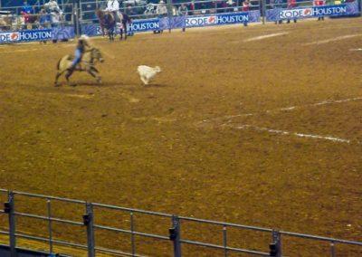 Houston-Rodeo-2010-12