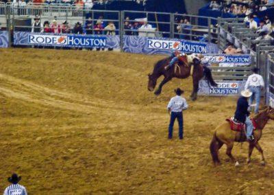 Houston-Rodeo-2010-14