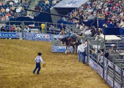 Houston-Rodeo-2010-15