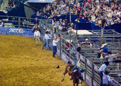 Houston-Rodeo-2010-16