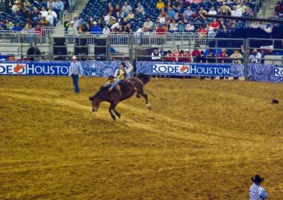 Houston-Rodeo-2010-17