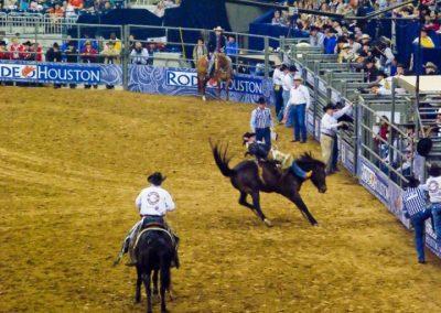 Houston-Rodeo-2010-18