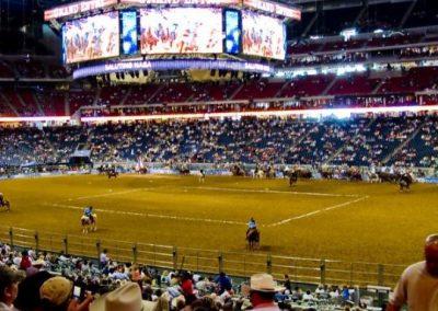 Houston-Rodeo-2010-2