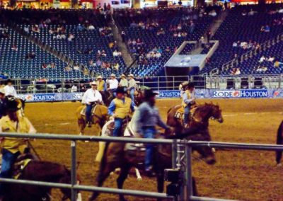 Houston-Rodeo-2010-21