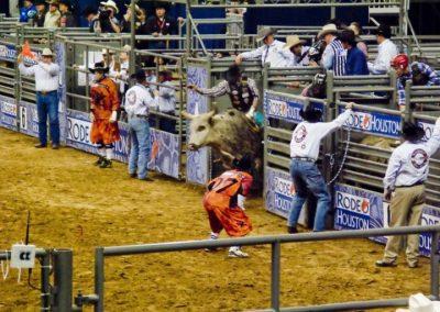 Houston-Rodeo-2010-22