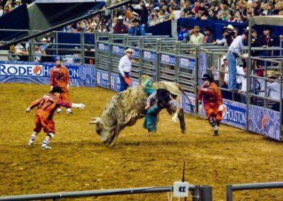 Houston-Rodeo-2010-24
