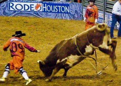Houston-Rodeo-2010-25