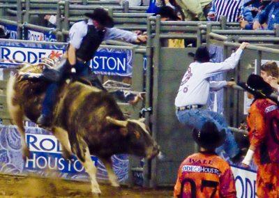 Houston-Rodeo-2010-31