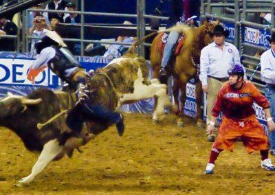 Houston-Rodeo-2010-35