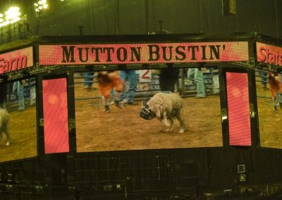 Houston-Rodeo-2010-37