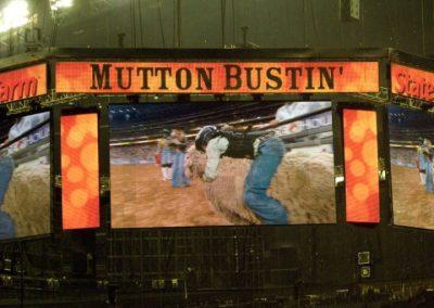 Houston-Rodeo-2010-38