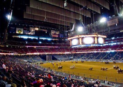 Houston-Rodeo-2010-7