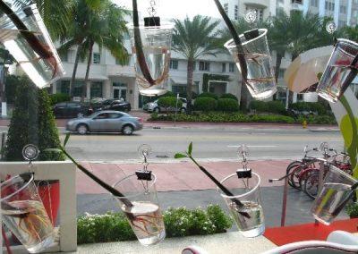 Miami-Beach-2009-1