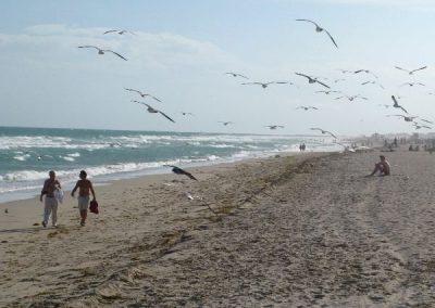 Miami-Beach-2009-12
